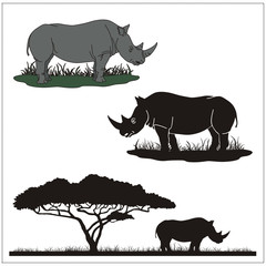 vector rhinoceros on white background, profile and silhouette of the rhino