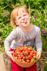 Funny little girl holds in hands big bowl of strawberries. Sunny summer day on countryside village.