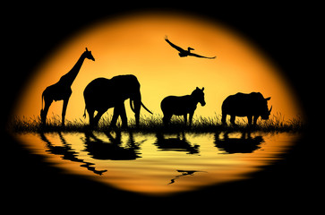 Silhouette african animals on the background of sunset