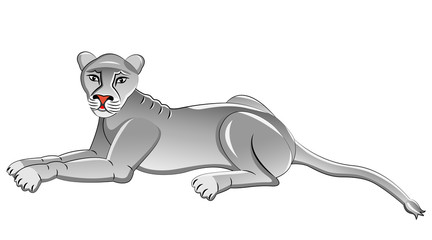 White Lioness. Isolated animal. Vector illustration.