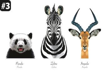 ANIMAUX -Portraits - #3 - Panda - Zèbre - Impala