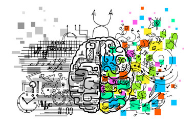 This vector illustrates the use of brain hemispheres, left and right, logic and creativity.