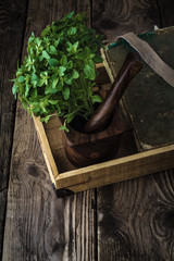 Basil, book and mortar on old boards