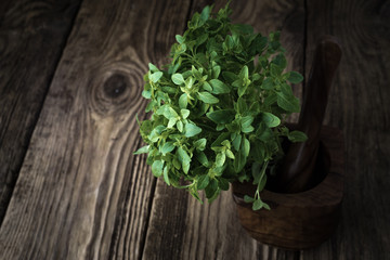 Basil and mortar on old boards