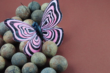 Schmetterling auf Hintergrund