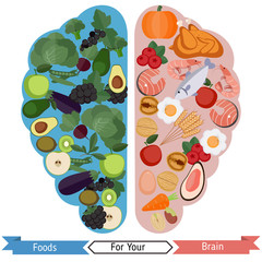 Brain Foods concept