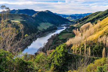 River and forest in Whanganui National Park, New Zealand