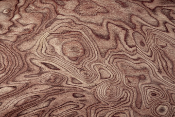 Natural exotic wood background pattern
