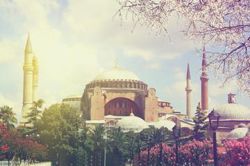 Saint Sophia ( Hagia Sophia ) at spring sunrise, Istanbul at spring sunrise, Istanbul. Travel concept . Vintage colored picture