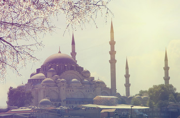 blue mosque at spring sunrise, Istanbul. Travel concept . Vintage colored picture