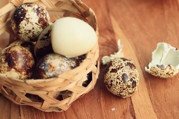 quail eggs and yolk