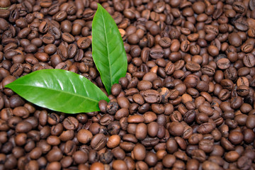 Roasted Coffee Beans Espresso and green leaf Coffee