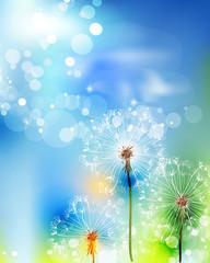 Abstract flower vector dandelion