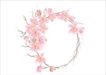 cherry blossom flowers border frame background concept ,vector illustration