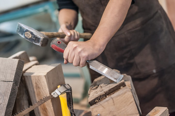 Female carpenter working in workshop / Female carpenter work on wood plank in workshop