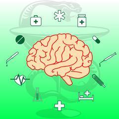 Жизненно важный орган человека. Мозг. Медицинские иконки.