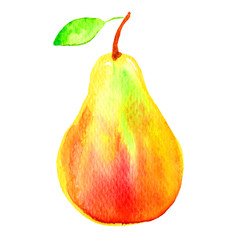 pear watercolor illustration on white background