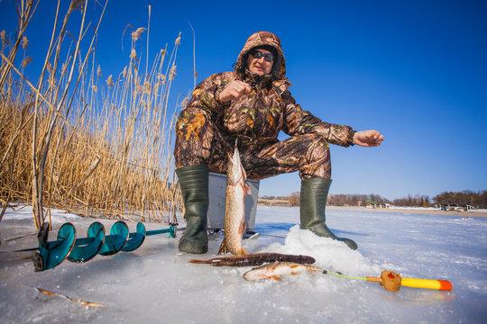 fisherman catch pike on winter fishing