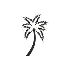 Palm tree - vector icon.