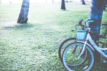 In de dag Fiets サイクリング