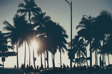 ヤシの木と夕焼けの空
