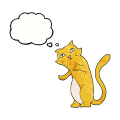 thought bubble textured cartoon cat