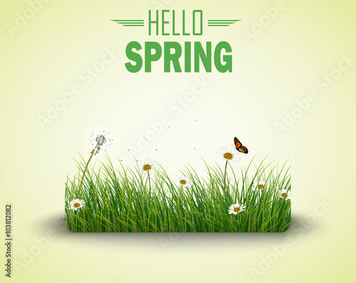 Green grass with flowers and butterflies isolated  background