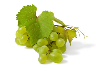Ripe bunch of grape on white background