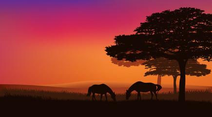 horses grazing under trees