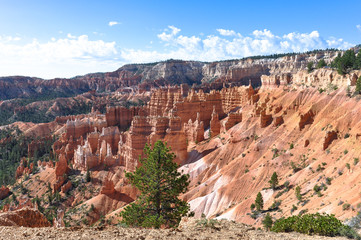 Hoodoos in the Bryce Canyon National Park, Utah
