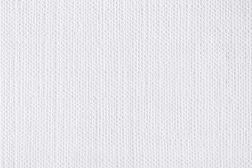 White canvas background texture.