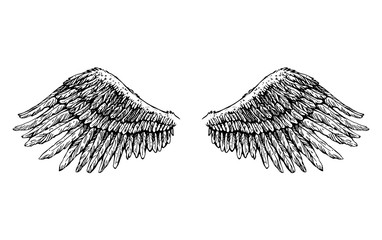 two black wide-open wings, tattoo, vector graphics