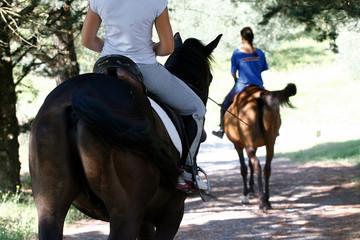 Foto op Textielframe Paardrijden horse ride - country