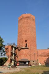 Mysia Wieża, Kruszwica, Polska