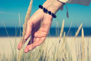 Woman's hand sliding through dune grass on sunny day