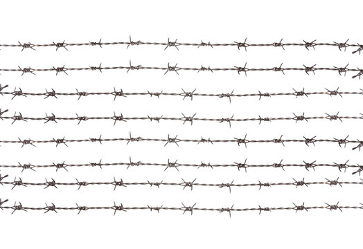 barbed wire , isolated on white background