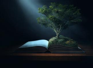 Bible Tree