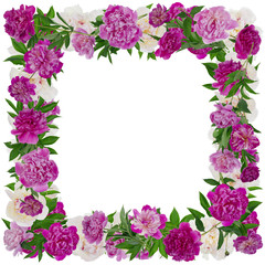 Peonies photo frame