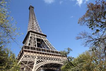 Eiffel Tower framed by trees, blue sky copy space
