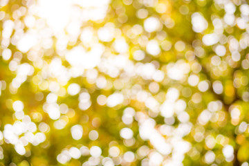 Abstract nature background - autumn bokeh