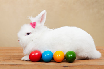 The pretty easter rabbit guarding colorful eggs