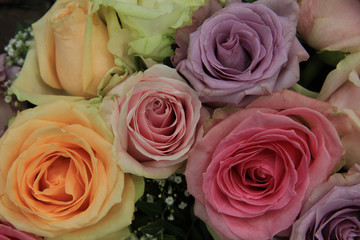 Bridal roses in soft colors