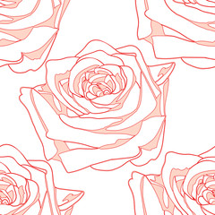 seamless pattern flowering rose on a white  background