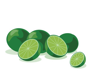 Lime fruits isolated. Vector