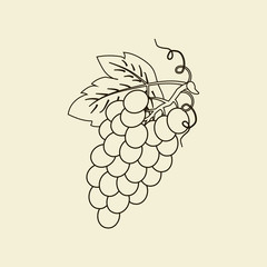 Grapes Fruit Icon