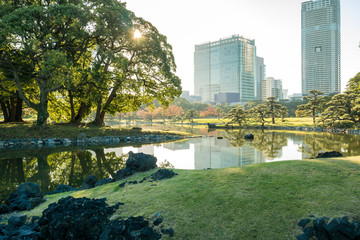 Fototapeten New York View of tokyo cityscape with park
