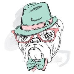 Funny bulldog vector. Bulldog wearing a hat with glasses and tie.