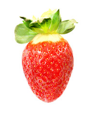 Photo wonderful Strawberry