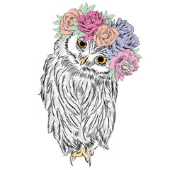 Cute owl in a wreath of flowers. Bird painted in the vector.
