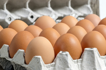 fresh eggs on paper tray package carton